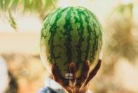 Ako si vybrať ten správny sladký a zrelý melón.